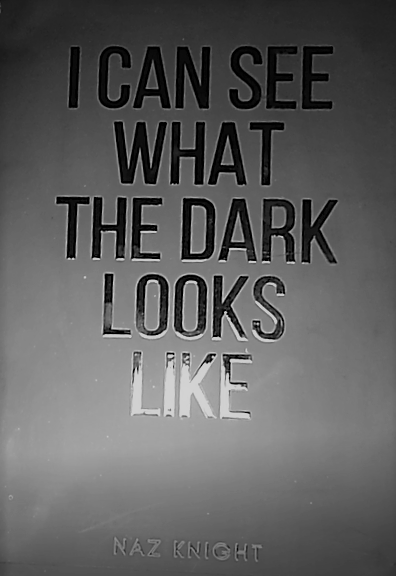 I Can See What The Dark Looks Like Book Cover